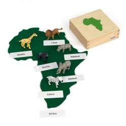 Tiere aus Afrika