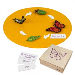 Vlinder, dieren in kistje