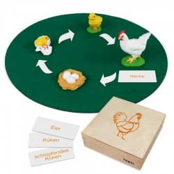 Kip, dieren in kistje